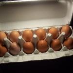eggs+002