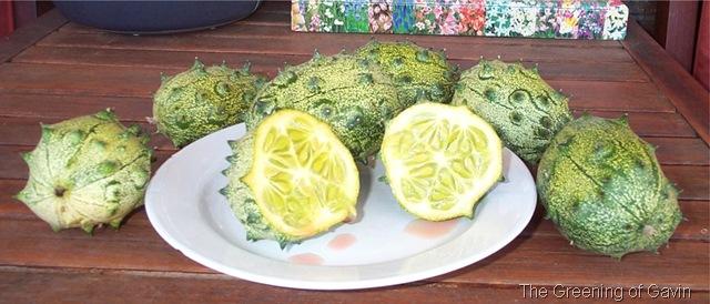 Horned African Melon Cut