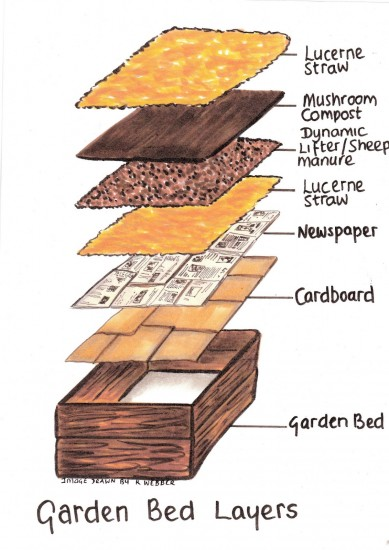 How to make raised garden beds - Layers