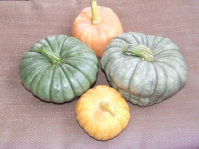 Queensland Blue Pumpkins