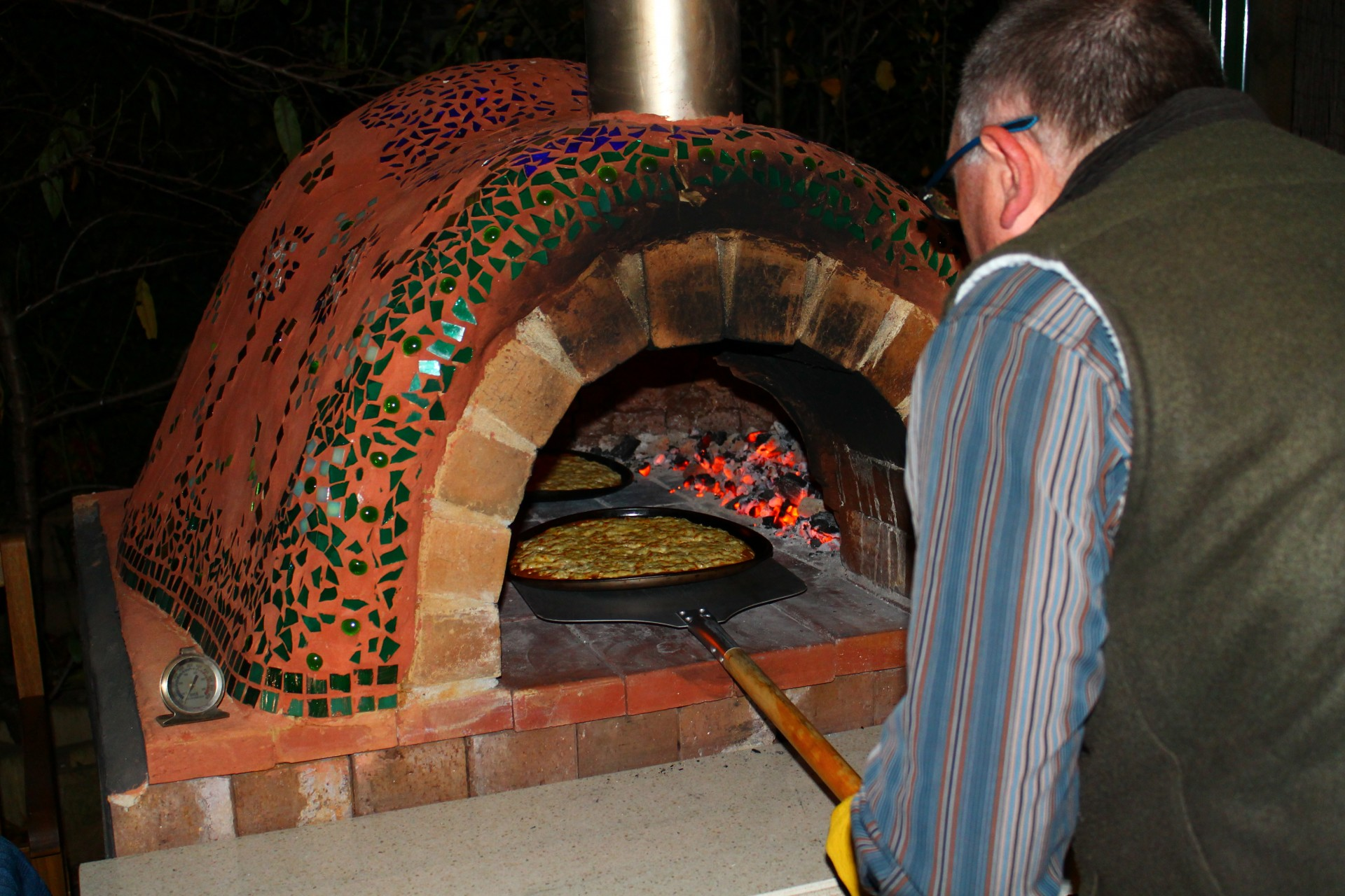 Best Pizza Ovens For Home Use Clay Oven - The Greening of Gavin
