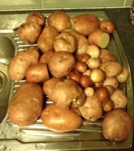 Pontiac Potatoes