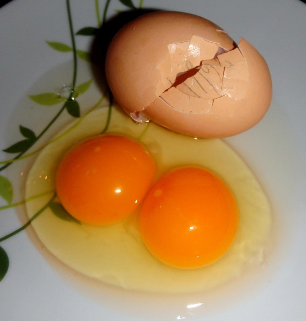 Double-yolker cracked