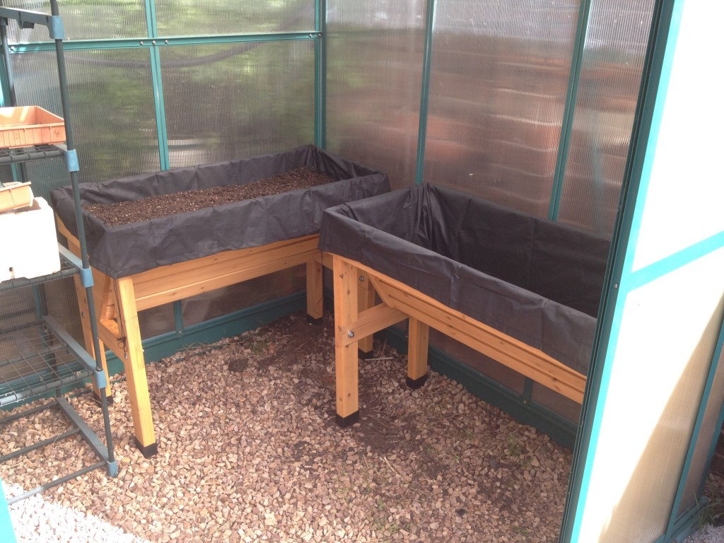 VegTrug in greenhouse