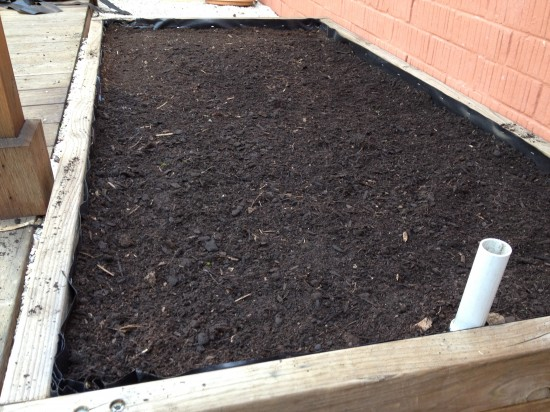 Wicking Bed filled with soil and liner trimmed