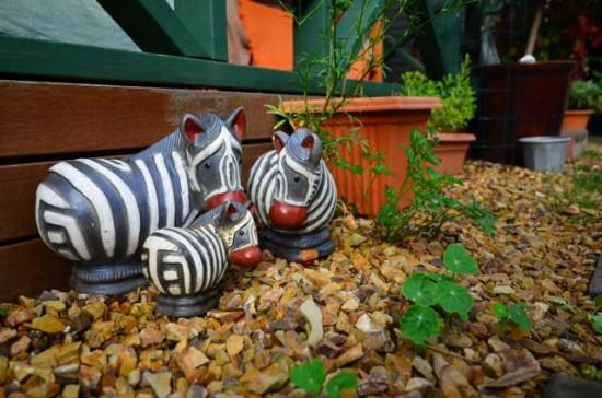 Ornamental zebra