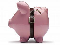 Budget tips save money
