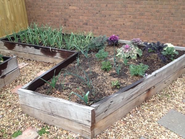 Rear Garden Bed