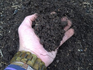 Well composted soil