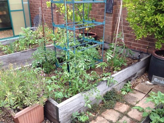 Suburban Food Farm - December 2014 - Garden Bed Two