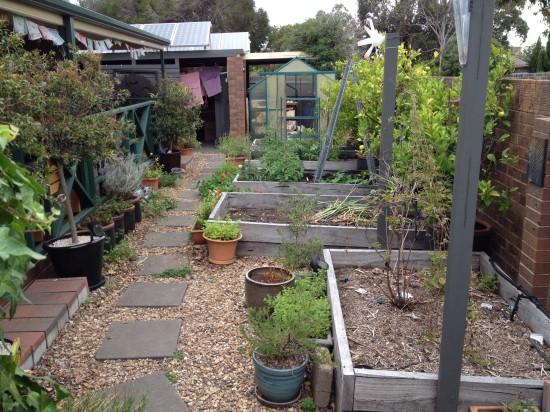 Suburban Food Farm - December 2014 - Western Garden