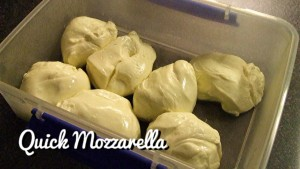 Quick Mozzarella