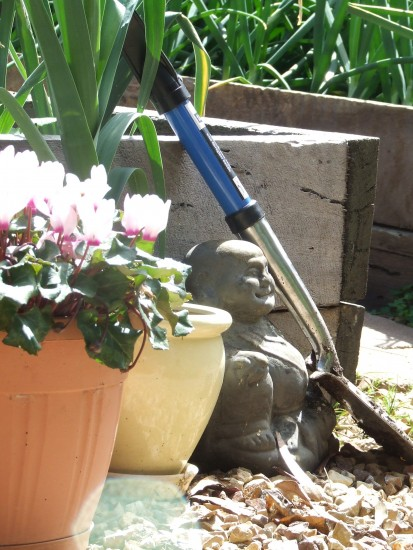 top 8 tools I use when gardening