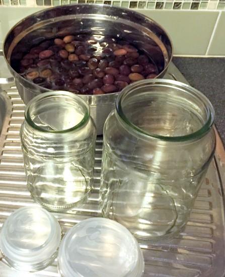 Curing Black Olives