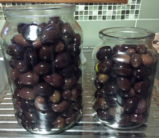 Curing Black Olives in jars