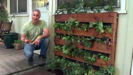 Pallet Garden for Vegetables