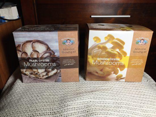 Mr Fothergill's Oyster Mushroom Kits